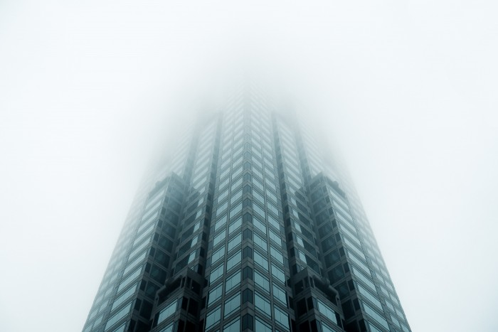 Loving the Fog